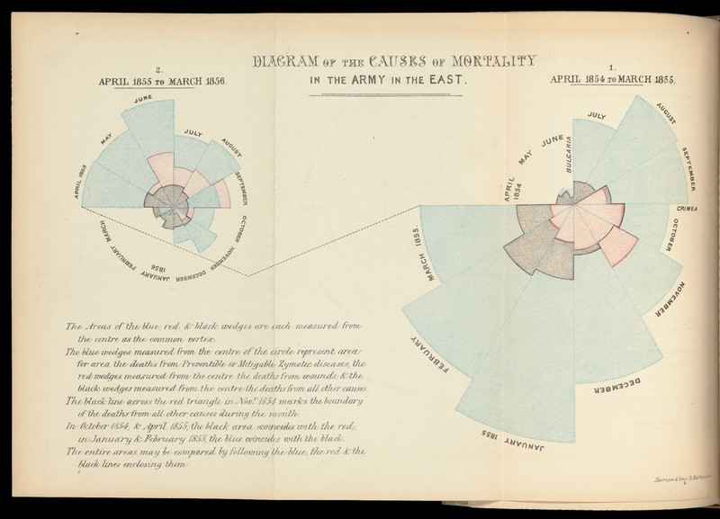 Diagram of the Causes of Mortality in the Army in the East.