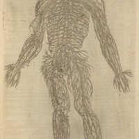 De corporis humani structura et usu libri III.