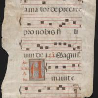 Collection of Leaves from a Gradual or Antiphon
