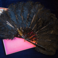 Hand Fan. Ostrich Feathers and Tortoise Shell.