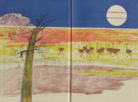 The Story of an African Farm- Endpapers